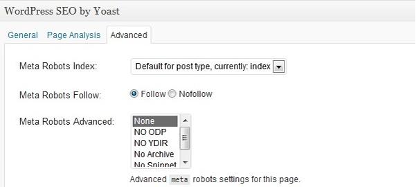 Imagem do plugin wordpress seo com a tag index atualizada
