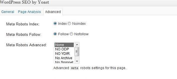 Imagem do plugin wordpress com o padrão de tag index